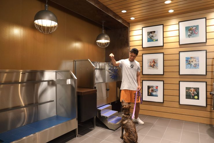 The pet program at The Belgard includes a pet spa and grooming service